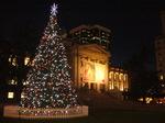 christmas tree_1.JPG